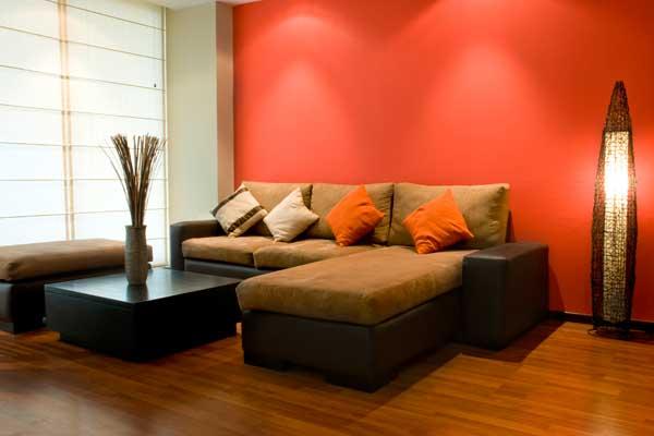 צבע לסלון
